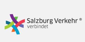 Logo-SVV_236076